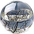Ecosphere ecosystem