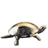 El Casco Brillenständer - edelchrom